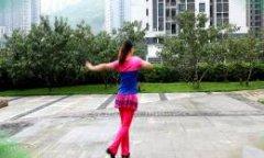 叶子广场舞山谷里的思念 分解动作教学与背面演示
