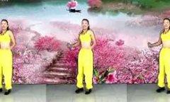 凤凰香香广场舞护花使者 正背面演示