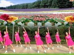 春英广场舞康电情歌 正背面演示与口令分解动作教学