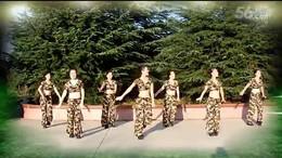 天姿广场舞映山红 2015年28期广场舞
