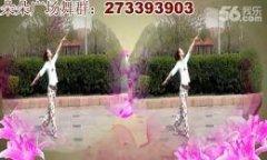 济南朵朵广场舞中国美 正背面演示与口令分解动作教学