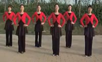 美久广场舞蓝色的蒙古高原 正背面演示