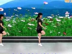 太湖一莲广场舞 歌在飞 滑步舞 含背面动作分解教学