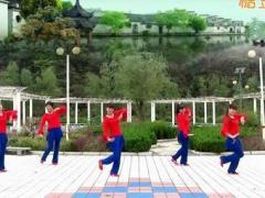 蝶依广场舞 中国美 含分解教学