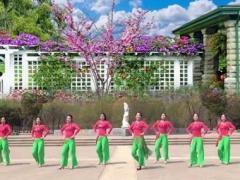 美久广场舞歌在飞 含教学